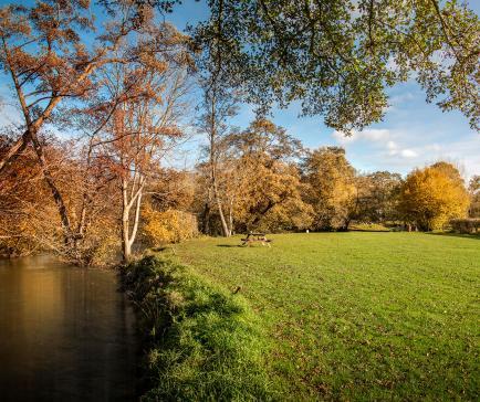 Riverside camping ground at Rockbridge Park