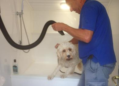 Dog wash at Rockbridge caravan park photo