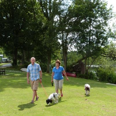 dog friendly caravan sites photo
